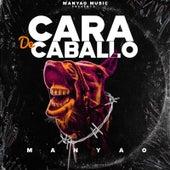 Cara De Caballo by Manyao