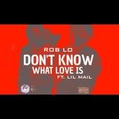 Don't Know What Love Is de Roblo