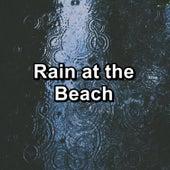 Rain at the Beach de Nature Sound Collection