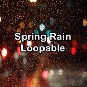 Spring Rain Loopable by Thunderstorm Sleep