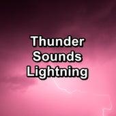 Thunder Sounds Lightning by Thunderstorms
