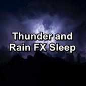 Thunder and Rain FX Sleep de Nature Sound Collection