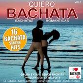 Quiero Bachata!, Vol. 1 (Bachatas Romanticas) de Grupo Extra, Principes De La Bachata, Senor Bachata, Hector Gonz, GRUPO EXTRA, EL TAIGER