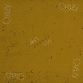 Crazy (Live) von Viajes Sonoros