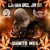 La Ira del JR 01 by Quinto Mes