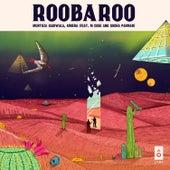 Roobaroo by Murtuza Gadiwala