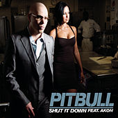 Shut It Down de Pitbull