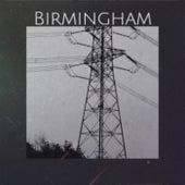 Birmingham de Various Artists
