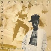 How Ya Like Me Now by Spyder-D