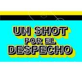 Un Shot Por El Despecho by Various Artists