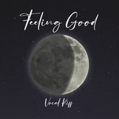 Feeling Good by Vocal Riff