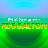 Está Sonando: Reggaeton de Various Artists