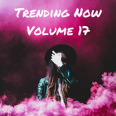 Trending Now Volume 17 de Various Artists