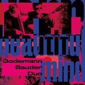 Beautiful Mind by Godemann Bauder Duo