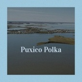 Puxico Polka by Various Artists
