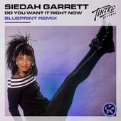 Do You Want It Right Now (BluePrint Remix) von Siedah Garrett