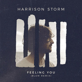 Feeling You (BLEM Remix) by Harrison Storm
