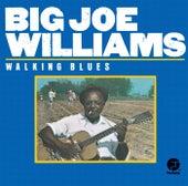 Walking Blues de Big Joe Williams