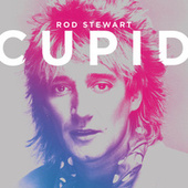 Cupid by Rod Stewart