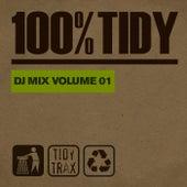 100% Tidy, Vol. 1 von Various Artists