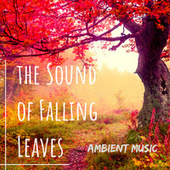 The Sound of Falling Leaves: Ambient Music von Various Artists