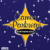 Original Northern Soul Hits From Cameo Parkway de Various Artists