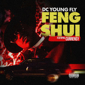 Feng Shui by DC Young Fly