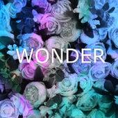 Wonder von MusicWithSagar
