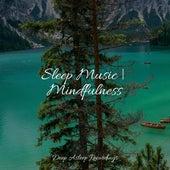 Sleep Music | Mindfulness by Instrumental