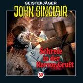 Schreie in der Horror-Gruft (2/3) - Folge 39 von John Sinclair