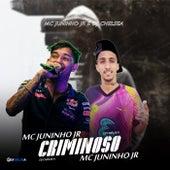 Criminoso by DJ Chelsea