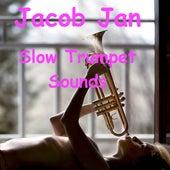 Slow Trumpet Sounds di Jacob Jan