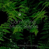 Comforting Music Pieces by Spa Relaxation