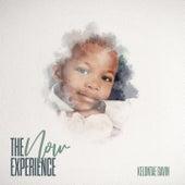 The N.O.W. Experience by Kelontae Gavin