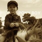 Pony Boy von Pål Bråtelund