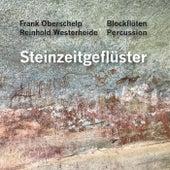 Steinzeitgeflüster by Reinhold Westerheide