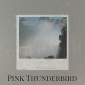 Pink Thunderbird de Tony Bennett, Gene Vincent, Chick Webb, Bernard Herrmann, Jelly Roll Morton, Pat Boone, Dionne Warwick, Herman's Hermits, Alex North, MGM Studio Orchestra