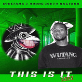 This is it (Remix) by WireFang