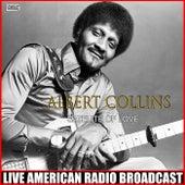 Satelite Of Love (Live) de Albert Collins