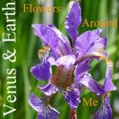 Flowers Around Me von Venus