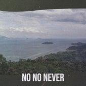 No No Never de Various Artists
