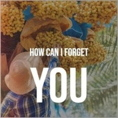 How Can I Forget You by Various Artists