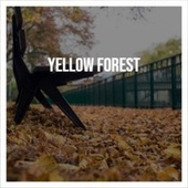 Yellow Forest de Various Artists