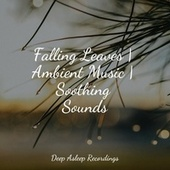 Falling Leaves | Ambient Music | Soothing Sounds de S.P.A