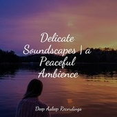 Delicate Soundscapes   a Peaceful Ambience by Sleep Sound Library