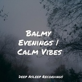 Balmy Evenings | Calm Vibes von Massage Music