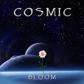 Bloom de Cosmic