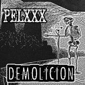 Demolicion de Pelxxx