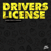 Drivers License by Karma Child