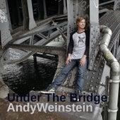 Under the Bridge by Andy Weinstein